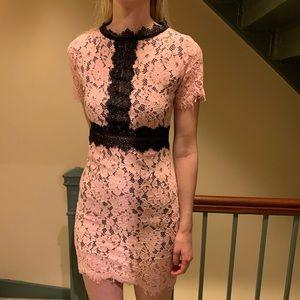 Dresses & Skirts - NWT Pink & Black Dress